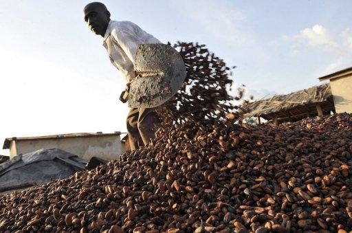 Waar komt cacao vandaan