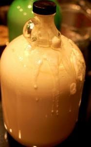 Advocaat recept stap voor stap foto's: eierdooiers mixen met melk, suiker en alcohol. Laten rusten in bokalen tot het indikt en donkergeel kleurt.